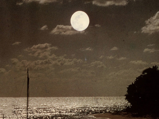 Echo And The Bunnymen – The Killing Moon