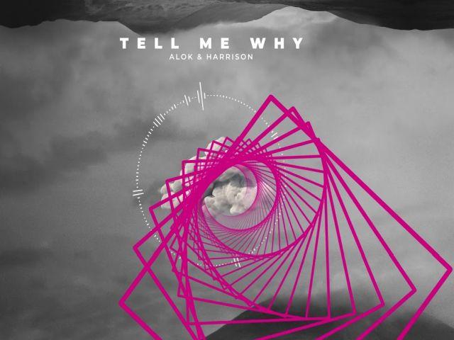 Alok & Harrison - Tell Me Why